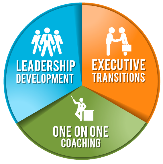Corporate Executive Coaching Program