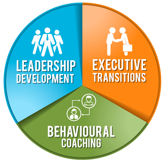 corporate-and-executive-coaching-programme